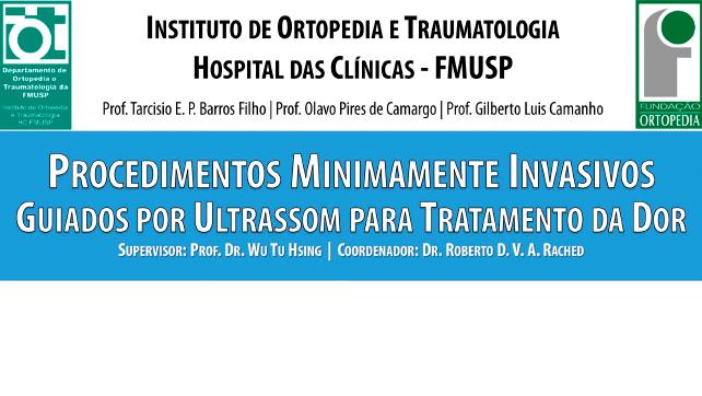 Procedimentos Minimamente Invasivos Guiados por Ultrassom para Tratamento da Dor